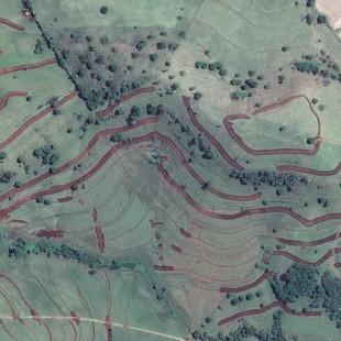 Pleiades PSM 0,50 m cores naturais em área agrícola com conservação de solos, Ibiporá- PR
