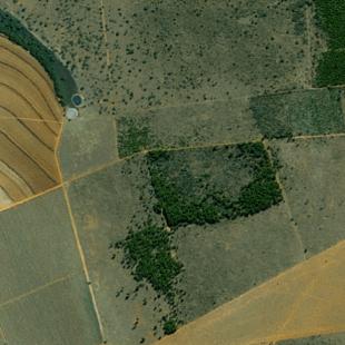 SPOT MAP PSM 2,50 m de resolução cores naturais ortoretificado de area de lavoura em Pompeu - MG