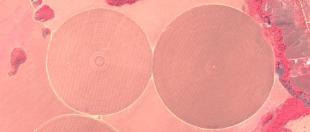 Imagem Kompsat 3A modo PSM, falsas cores, de  40 cm de resolução de uma área agrícola, escala 1:7.500
