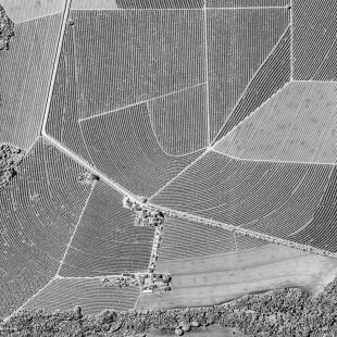 Brasil - Agriculture_crop