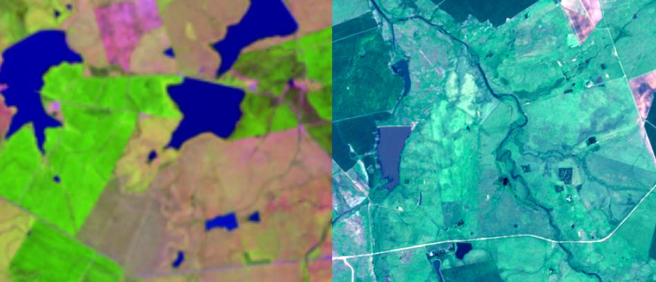 Comparativo Landsat 15 m fusão 6-4-3 + PAN e Sentinel 2, 10 m colorido 4-3-2 em RGB, área rural no RS
