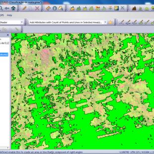 Classificação e vetorização de área de mata realizada automaticamente pelo Global Mapper