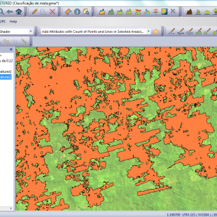 """Classificação e vetorização de área de """"não-mata"""" realizada automaticamente pelo Global Mapper"""