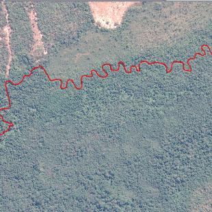 Interpretação da calha do rio na imagem Pleiades ortoretificada com precisão melhor que 7.50 m
