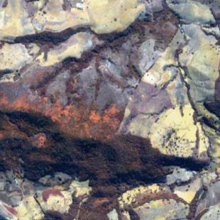 RapidEye, 5 m de resolução cores falsas, 4-2-1 em RGB, de área florestal
