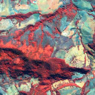 RapidEye, 5 m de resolução cores falsas, 5-2-1 em RGB, de área florestal