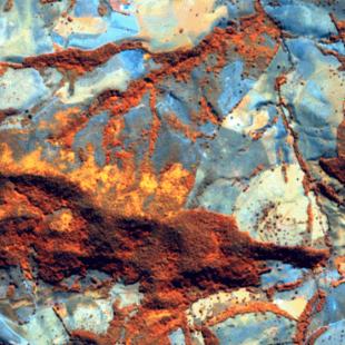 RapidEye, 5 m de resolução cores falsas, 5-4-3 em RGB, de área florestal