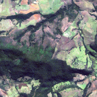 RapidEye, 5 m de resolução cores naturais, 3-2-1 em RGB, de área florestal