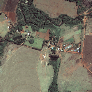 Pleiades PSM de 0,50 m de resolução P&B de área rural de Anápolis-GO