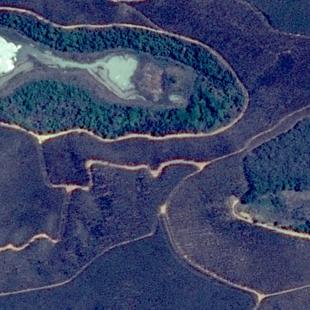 SPOT 6 de 1,50 m de resolução de uma área florestal cultivada perto de Ipaba, MG