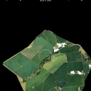 Imagem em cores naturais no celular no aplicativo Avenza Map