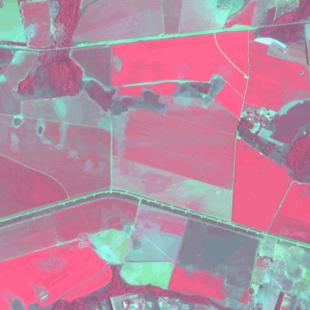 Spot 6 MS de 6 m de resolução, falsas cores de área rural no DF