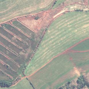 WV2 PSM cores naturais de  área rural de Mangueirinha - PR